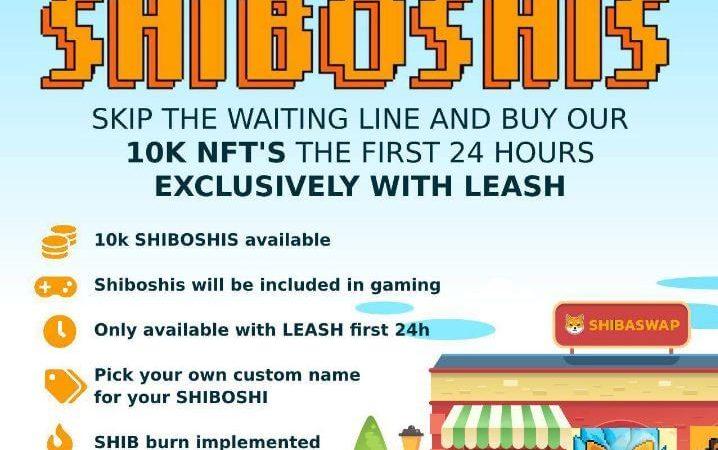 "Developer Shiba Inu ($SHIB) Akan Rilis NFT ""Shiboshis"""
